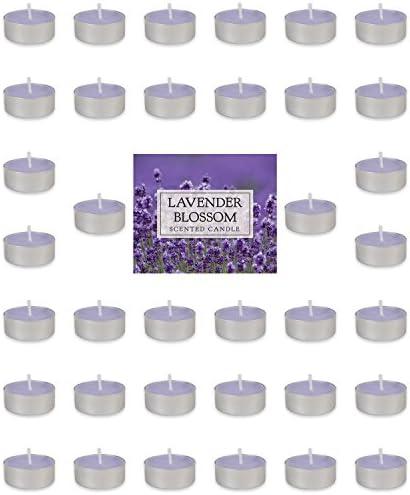 DII Z02076 Tealight Aromatherapy 1 5x0 63 product image