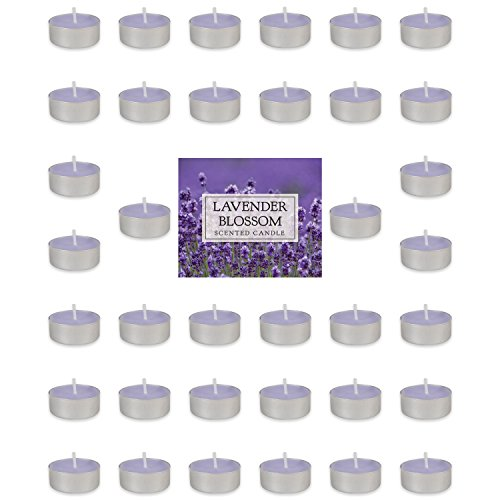 Home Traditions Highly Scented Tealight Candle (Pack of 36) For Home Décor, Wedding, Party, Holiday, Spa & Aromatherapy - Lavender Blossom