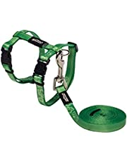Rogz Kiddycat Cat Harness and Lead, Lime Paw, Small