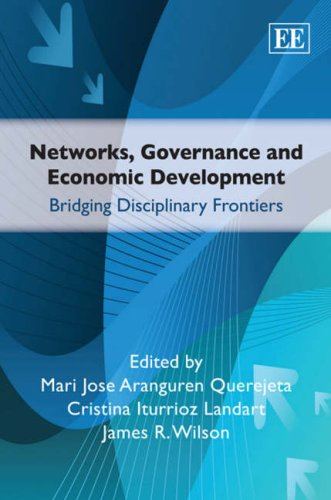 Networks, Governance and Economic Development: Bridging ...