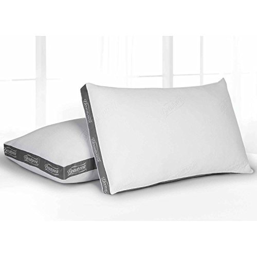 Set of 2, King ClearFresh Odor Control Technology, Luxury Spa Resort Pillow, -