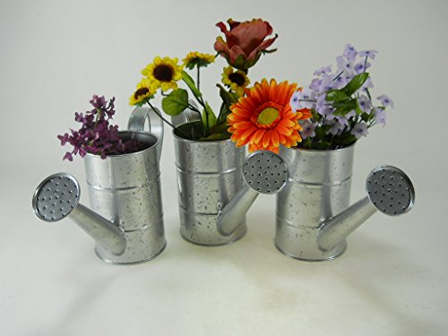 3pc Silver Speckled Water Cans bucket pail planter arrangement pot flower (Flower Pail)