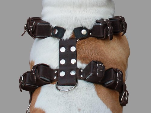 8 lbs Brown Genuine Leather Weighted Pulling Dog Harness for Exercise and Training. Fits 33''-39'' Chest, by Dogs My Love (Image #1)