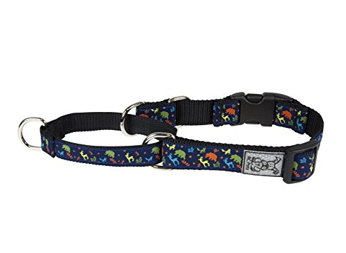 RC Pet Products Wilderness 1'' Easy Clip Martingale Training Collar, Medium by RC Pet Products