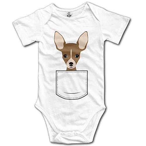 fhcbfgd Chihuahua in Pocket Baby Rompers Short Sleeve for sale  Delivered anywhere in Canada