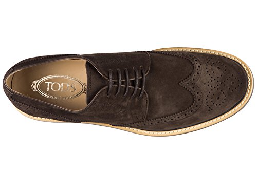 Tod's clásico zapatos de cordones en ante hombres nuevo bucatura fondo light der