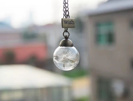 Dandelion Necklace, Real Dandelion Seed in Glass Globe Pendant,glass Orb Nature Pendant Dry Flower Necklace Make a Wish - Make A Wish Necklace