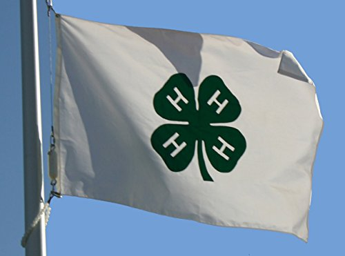 3X5 Ft 4H 4-H Organization 4 H Club Flag With Brass Grommets 4 H Flags