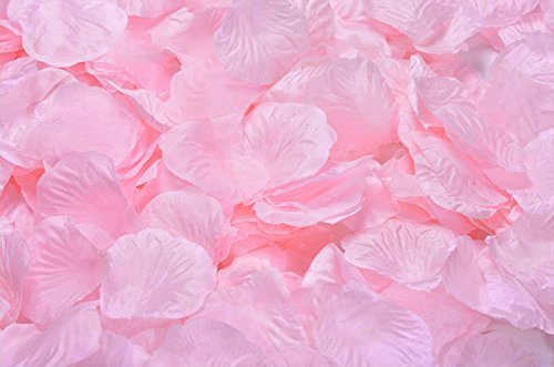 Ocharzy 1000pcs Silk Rose Petals Wedding Flower Decoration (Light Pink)
