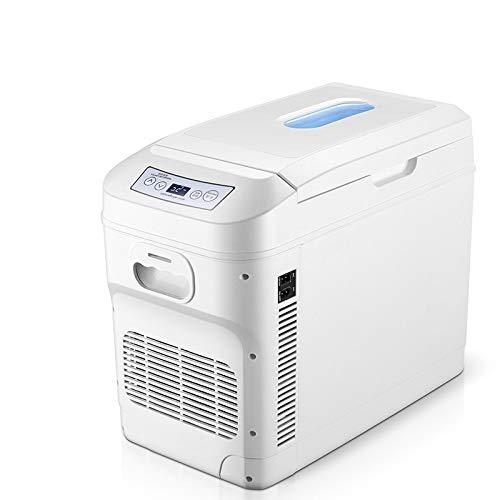 DYS@ Mini refrigerador, refrigerador para automóvil, refrigerador y ...