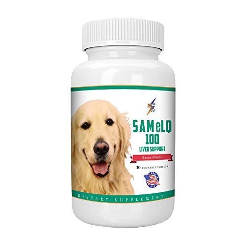 Best SAMeLQ 100 for Dogs & Cats (S-Adenosyl) Liver Support Supplement - Promotes Natural Hepatic Liver Health & Cognitive Brain Support - 30 Chewable Tablets