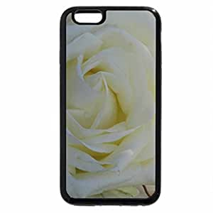 iPhone 6S / iPhone 6 Case (Black) White Rose Heart