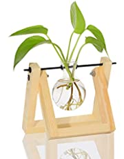 Ivolador Desktop Glass Planter Bulb Vase with Retro Solid Wooden Stand and Metal Swivel Holder for Hydroponics Plants Home Garden Wedding Décor