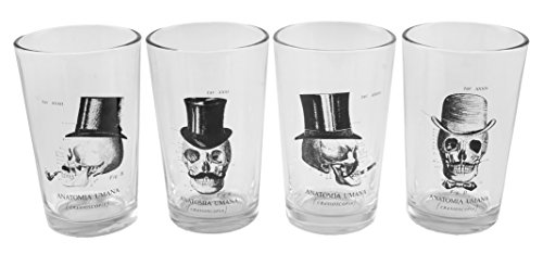 Halloween Glasses - Skull Anatomy Decorative Halloween Drinking Glasses Set of 4