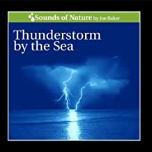 Thunderstorm By the Sea
