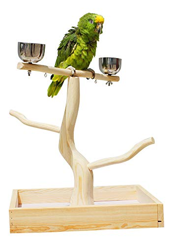Birds LOVE Tabletop T-Stand Deluxe Play Gym Bird Stand for Cockatiels Conures African Greys Amazons-Includes 2 top perches Easy Assembly Easy to Clean 19