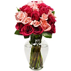 Benchmark Bouquets 2 Dozen Blushing Beauty Roses, With Vase for Valentine's Day