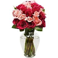 Benchmark Bouquets 2 Dozen Blushing Beauty Roses, With Vase