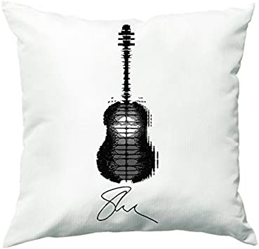 Fun Cases Shawn Mendes - Cojín de Tatuaje para Guitarra: Amazon.es ...
