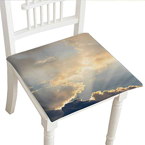 Classic Decorative Chair pad (18