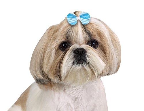 Aria Grosgrain Stripe Bows for Dogs, 100-Piece Canisters by Aria (Image #2)