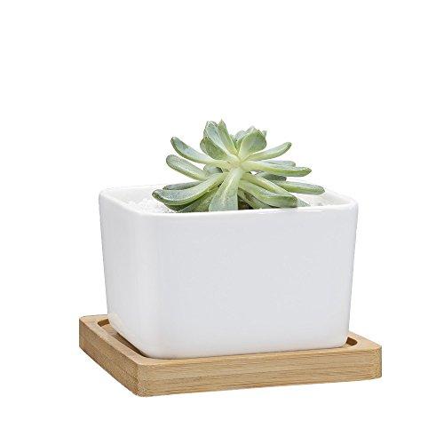 Mkono Ceramic Succulent Planter Bamboo product image