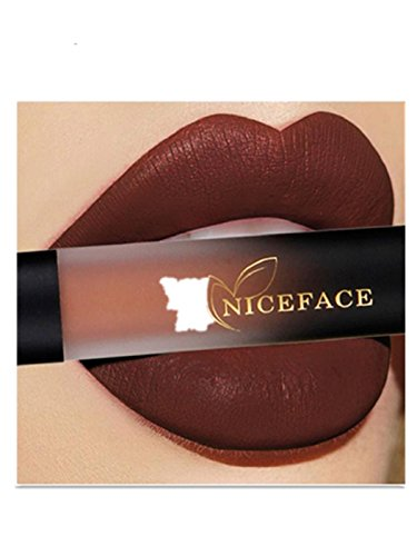 Plumping Sheer Gloss (NICEFACE Lipstick , Sagton New 18 Colors Lip Lingerie Matte Liquid Lipstick Waterproof Lip Gloss Lip Makeup (D))