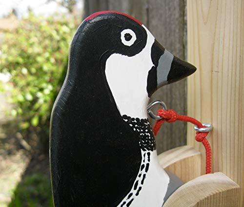 Acorn Woodpecker Door Knocker