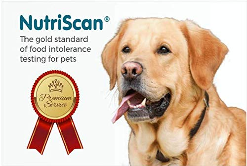 Nutriscan Pet Food Intolerance and Sensitivity Test for Dogs ()