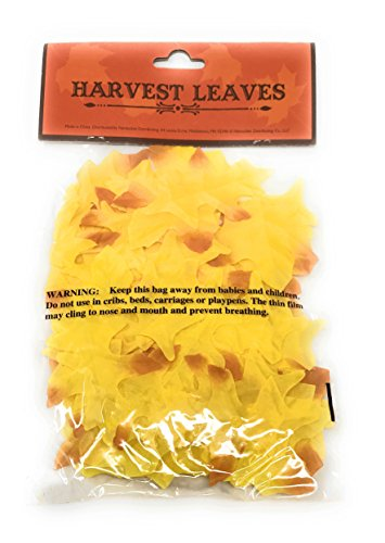 - Northeast Harvest Mini Fall Yellow Maple Leaves Autumn Weddings, Invitation Leaves, Fall Table Accent, 90 Count