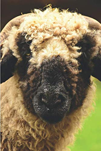 SHEEP! A 2019 Weekly Planner: Featuring October (Best Laid Plans) (Best Laid Plans 2019)