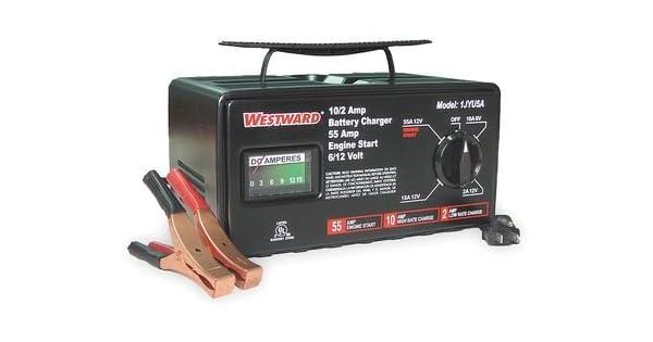 Amazon.com: Dayton 1jyu5 Cargador de batería, 6/12 V, (M ...