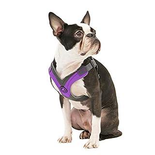 Gooby - Trekking Harness, Small Dog Fleece Lined Harness with Memory Foam Padding, Purple, X-Small