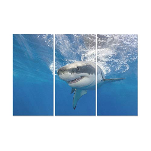(YUMOING 3 Panel Canvas Wall Art Great White Shark Swimming Just Under Wall Art Canvas Prints Wall Decor for Home Living Room Bedroom Bathroom Wall Decor Posters 15