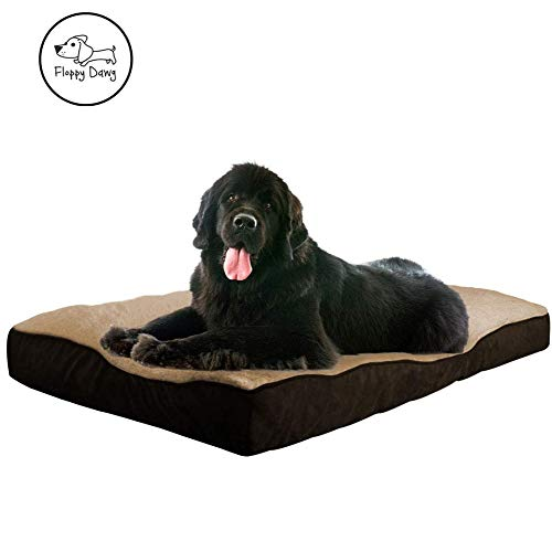 (Floppy Dawg Super Extra Large Dog Bed with Removable Cover and Waterproof Liner. Made for Big Dogs up to 100 pounds and More. Jumbo Size 48 x 30 and Stuffed 8 Inches High with Memory Foam Pieces.)