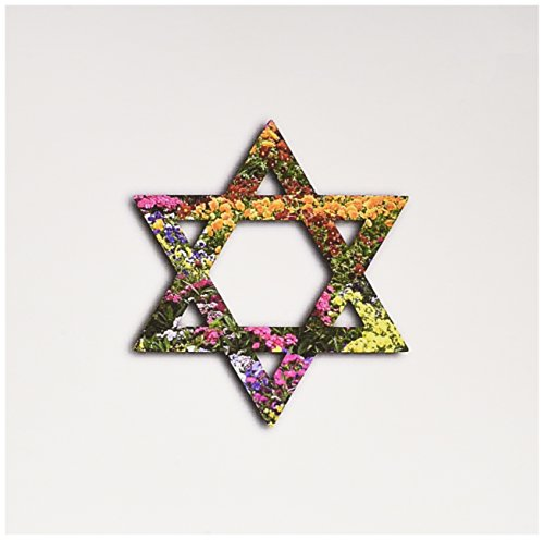 3dRose Colorful Floral Star of David. Multicolor flowers Jewish Magen David - Greeting Cards, 6 x 6 inches, set of 12 ()