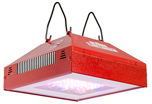 California Lightworks Solar Flare 220-watt LED Spectral Blend Bloom Booster