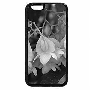 iPhone 6S Case, iPhone 6 Case (Black & White) - Flowers day at Edmonton Pyramids 28