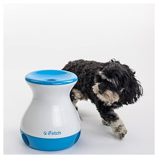 iFetch Frenzy, Mini