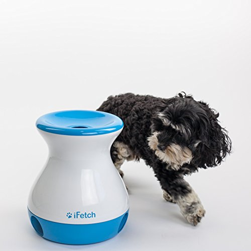 dog auto fetch toy - 2