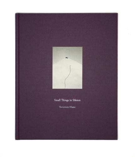 Masao Yamamoto: Small Things in Silence