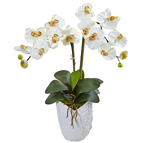 Double Phalaenopsis Silk Orchid - Nearly Natural Double Phalaenopsis Orchid Silk Arrangement, Cream