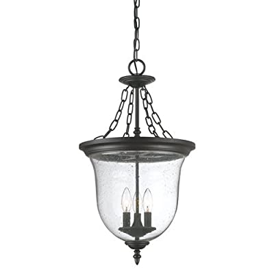 Acclaim 9316BK Belle Collection 3-Light Outdoor Light Fixture Hanging Lantern, Matte Black