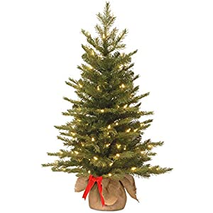 National Tree 3 Foot Feel Real Nordic Spruce Tree with 50 Warm White Battery Operated LED Lights with Timer in Burlap (PENS3-357-30-BS) 29