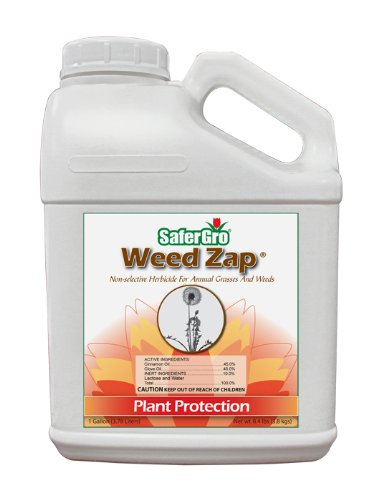 Safergro Weed Zap Certified Organic Natural Non-Selective Herbicide Concentrate, 1-Gallon by Safer Gro