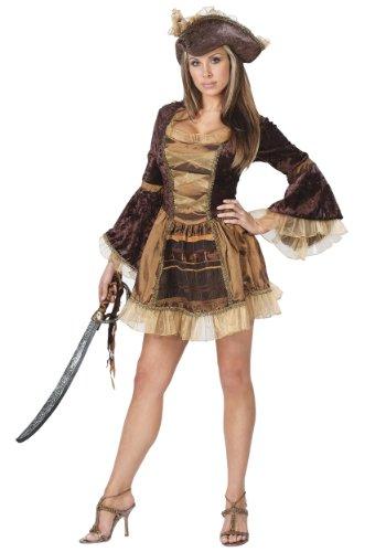 FunWorld Women's Sassy Victorian Pirate, Brown, M/L 10-14 Costume (Sassy Pirate Costume)