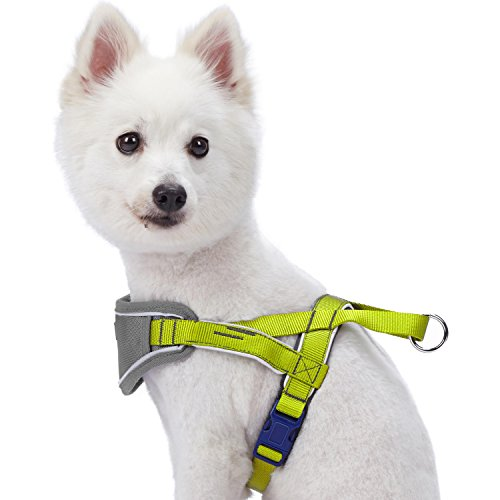 Image of Blueberry Pet 5 Colors Soft & Comfy 3M Reflective Strips Padded Dog Harness Vest, Chest Girth 17