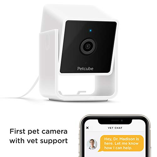 Petcube [New 2020] Cam Pet Monitoring Camera with Built-in Vet Chat for Cats & Dogs, Security Camera with 1080p HD Video…