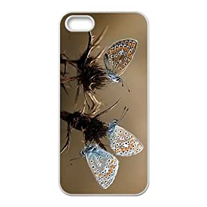 Butterfly Couple Hight Quality Plastic Case for Iphone 5s