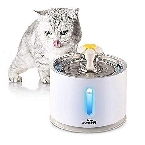 LiveGo Dispensador eléctrico del Agua del Gato del Acero ...